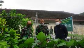 Dandim 0734/ Yogyakarta : Pemanfaatan Lahan Kosong Solusi Cerdas Di Saat Pandemi Covid 19